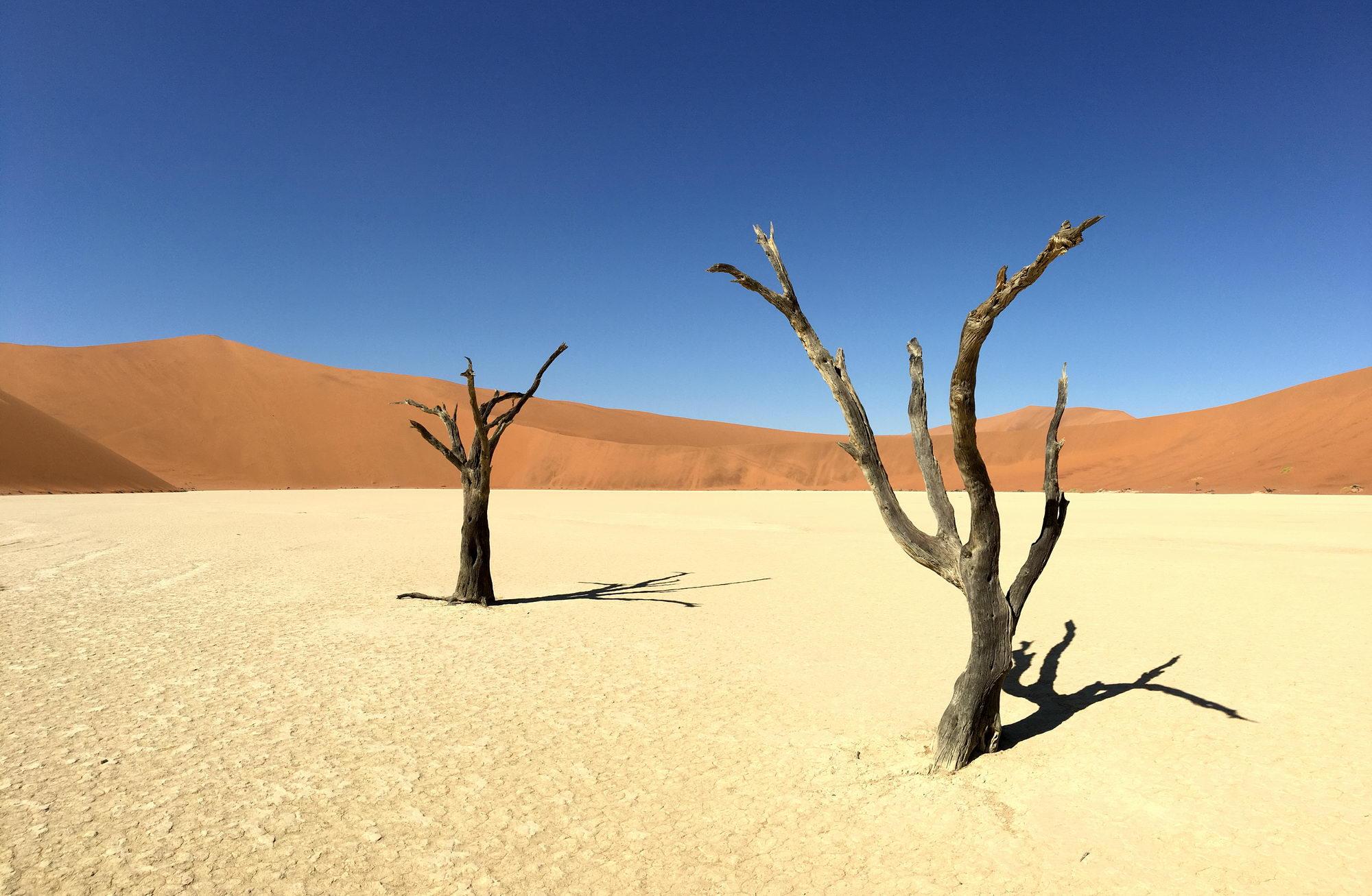 Dead Vlei, Namibija