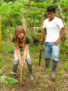 2010-Ekvador_53