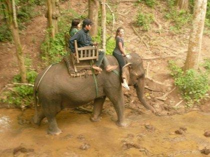 laos-2012_39