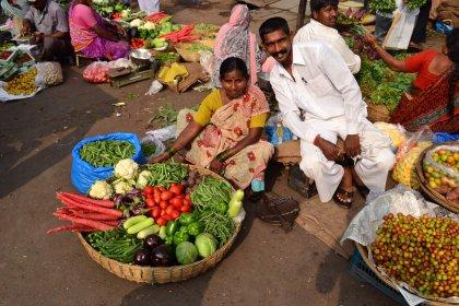 Indija-2013_11