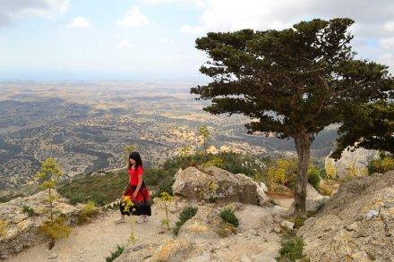 Ciper-2014_22