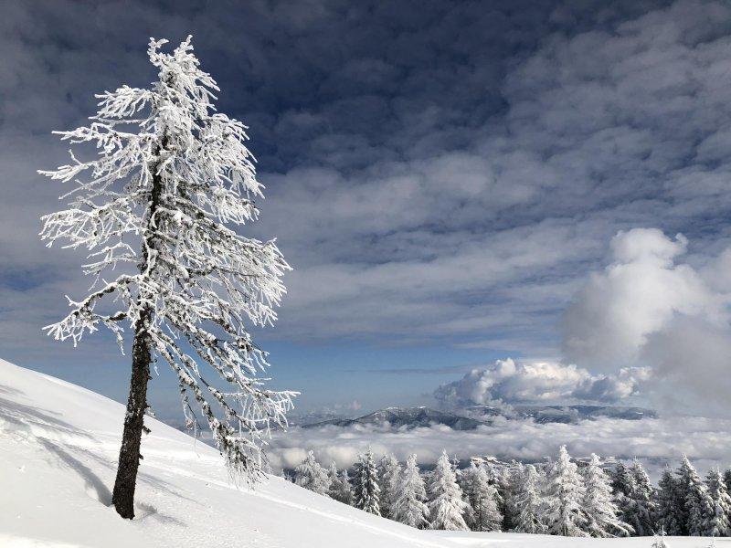 zimska idila na Uršlji gori