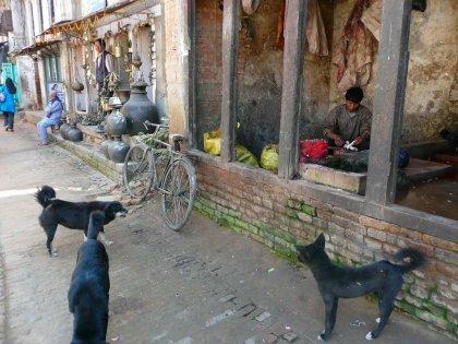 2009-Nepal_94