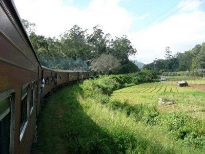 2010-Srilanka_010