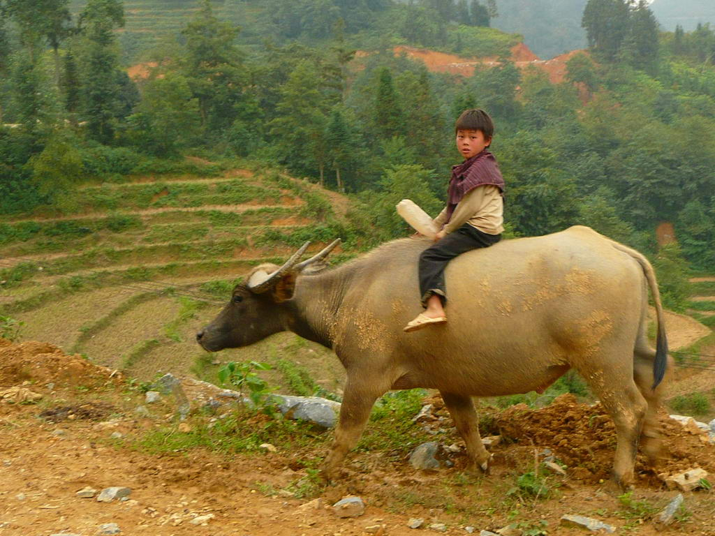 2007-vietnam_24.jpg