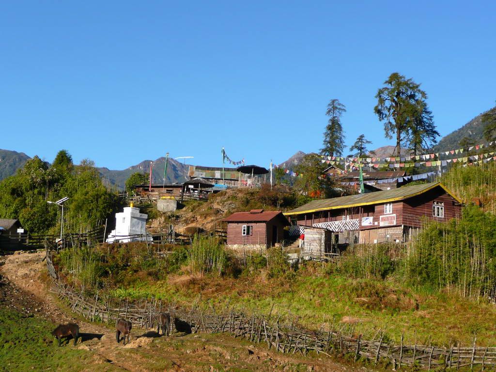 2009-Indija_04