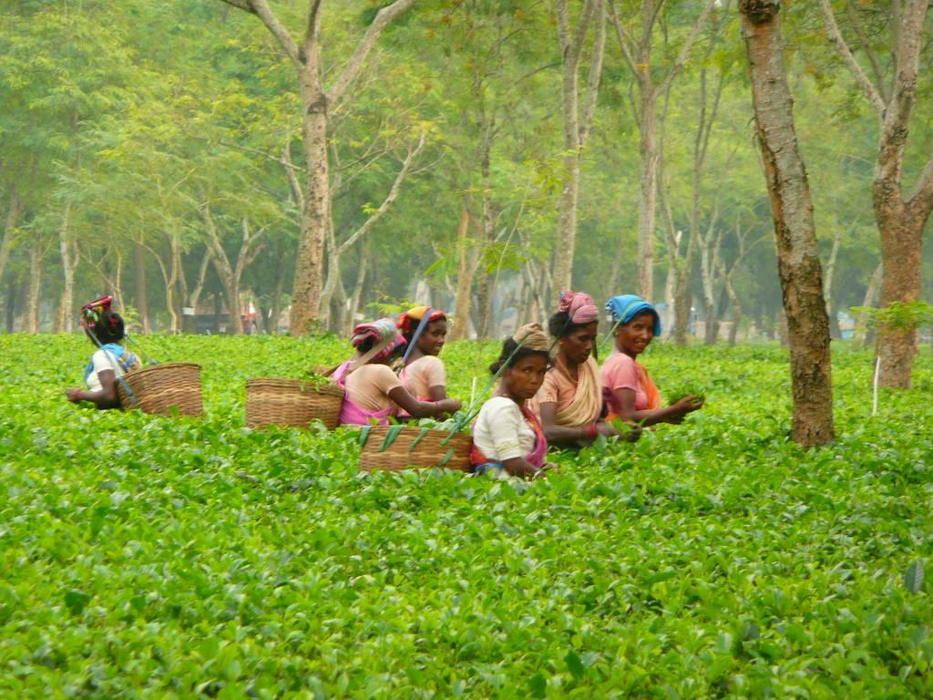 2009-Indija_34