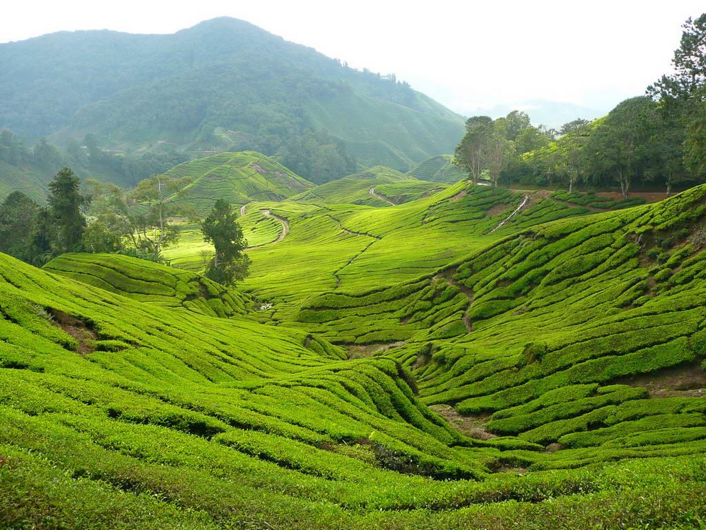 2009-Malezija_36