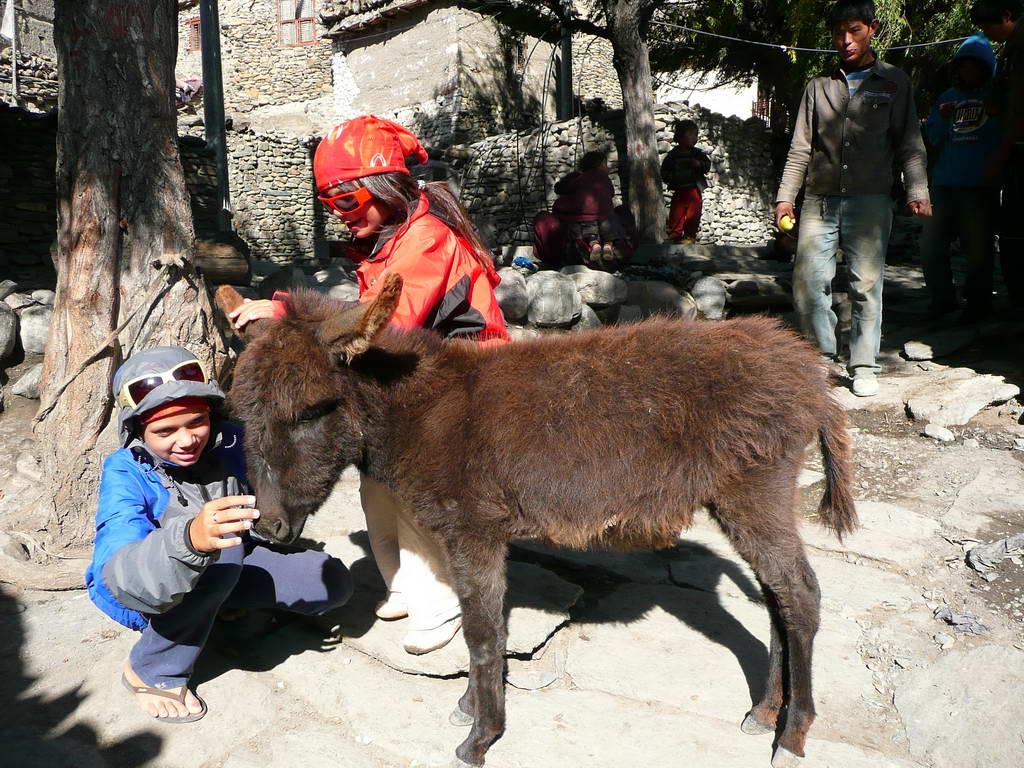 2009-Nepal_69