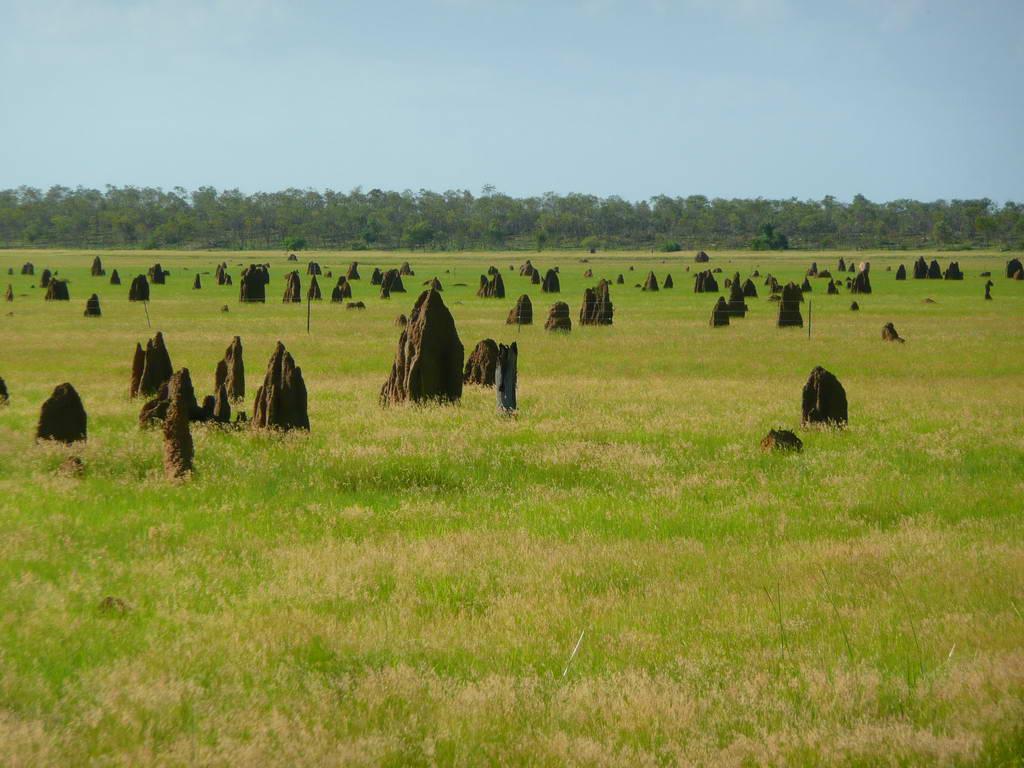 2010-Avstralija_021