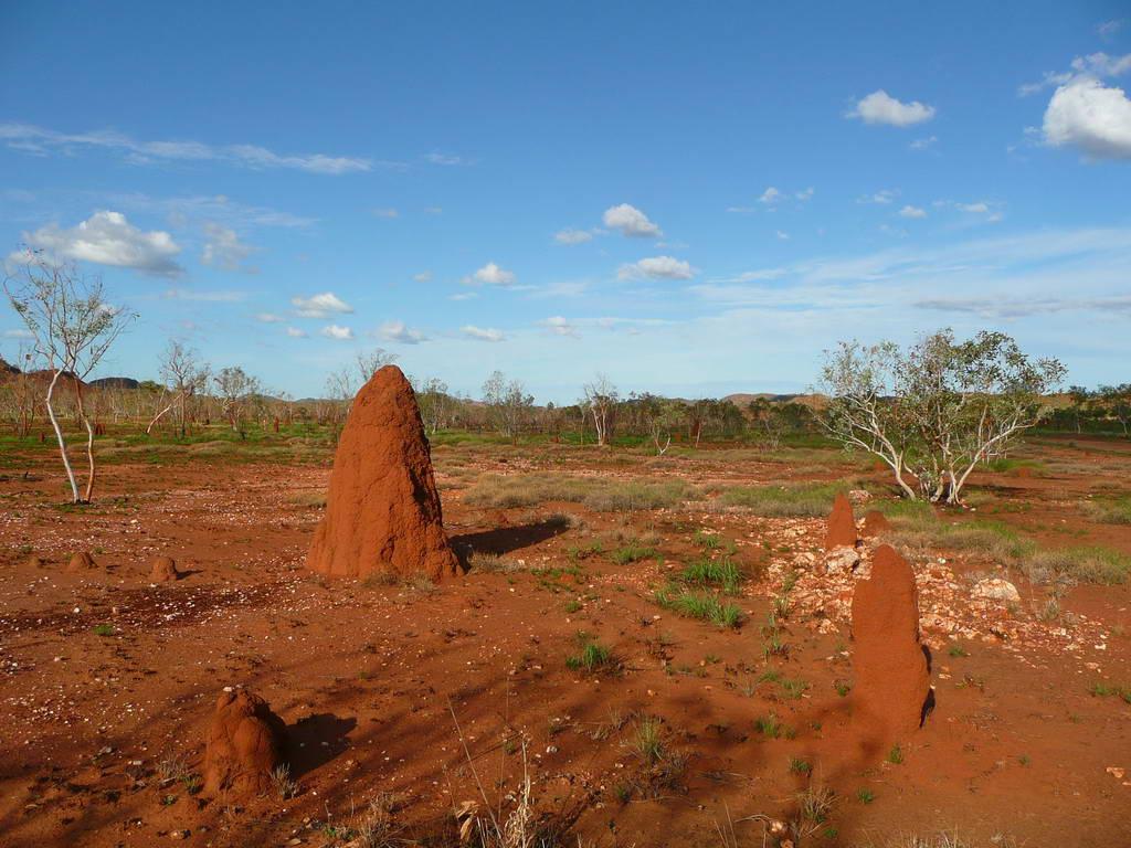 2010-Avstralija_022