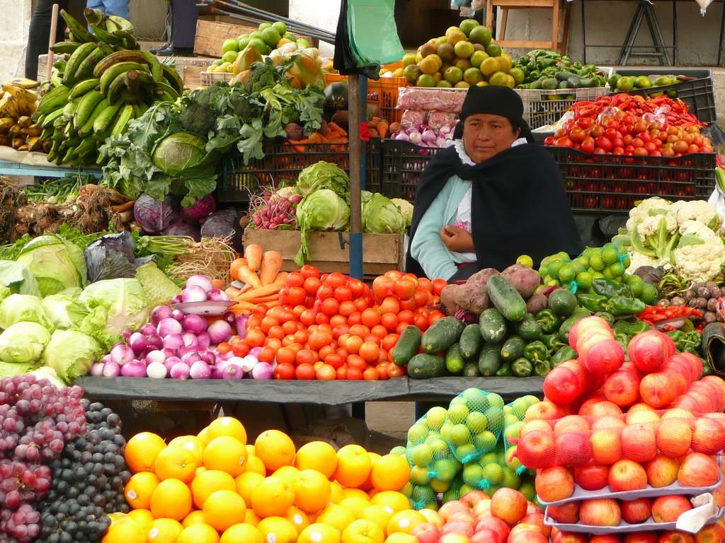 2010-Ekvador_03