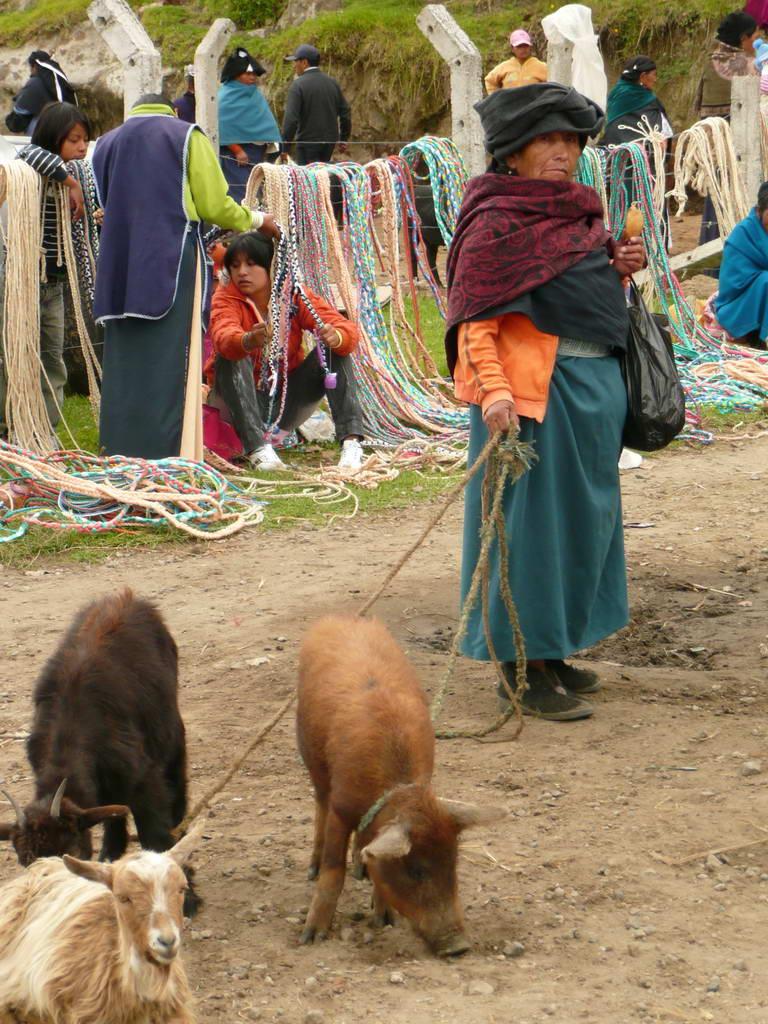2010-Ekvador_16
