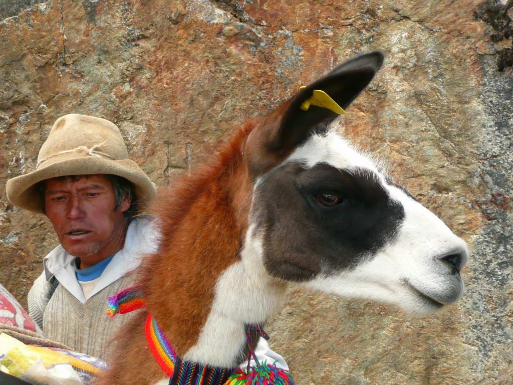 2010-Peru_24