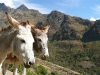 2010-Peru_17