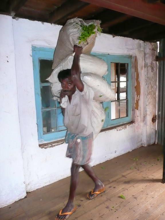 2010-Srilanka_023