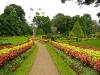 2010-Srilanka_021