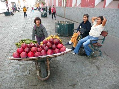 2010-Peru_07