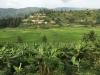 ruandski razgledi