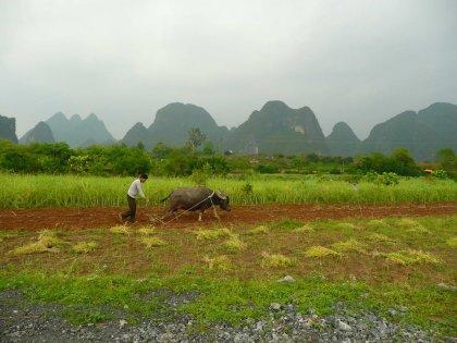 2010-Kitajska_31