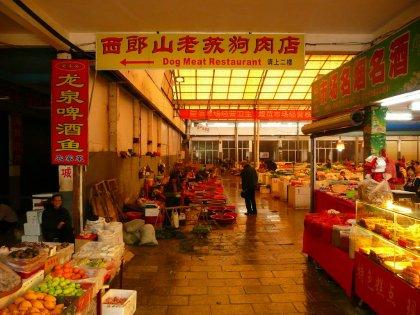 2010-Kitajska_35