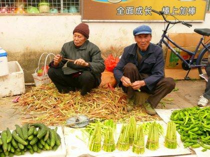 2010-Kitajska_36