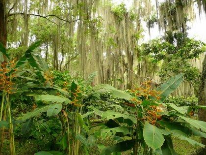 2010-Kolumbija_03