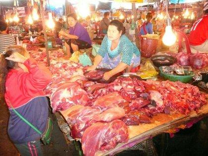 laos-2012_06