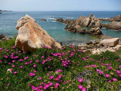 Sardinija-2013_29