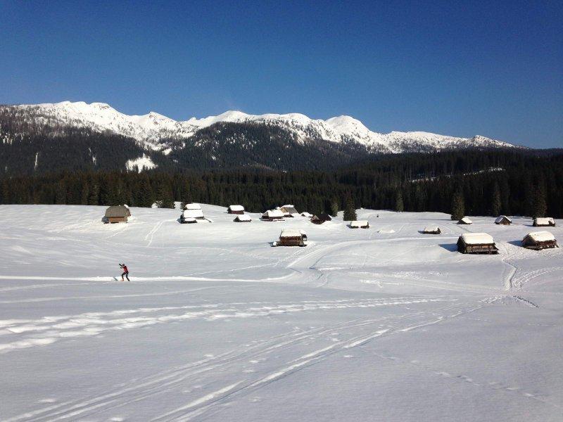 2013-zima18