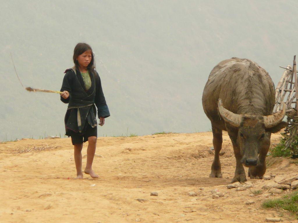 2007-vietnam_30.jpg