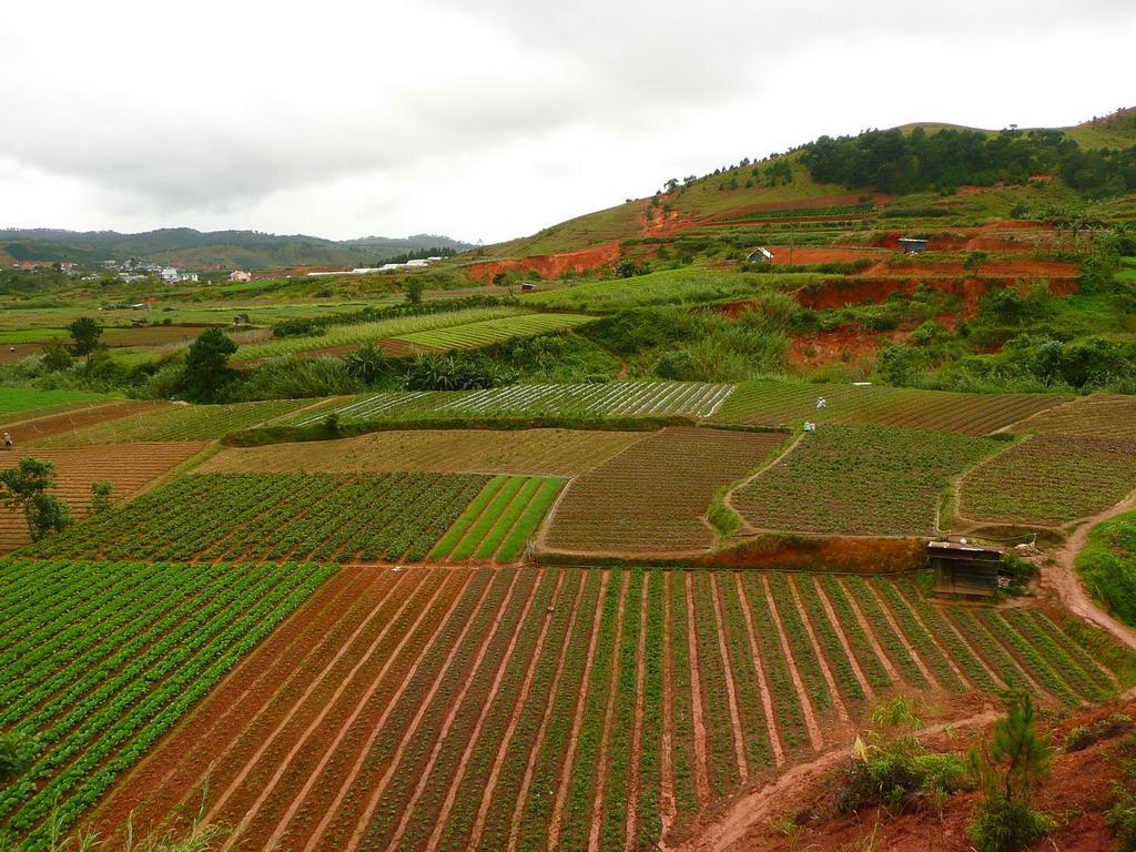 2007-vietnam_44.JPG