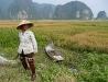 2007-vietnam_01.jpg