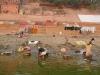 2009-Indija_57