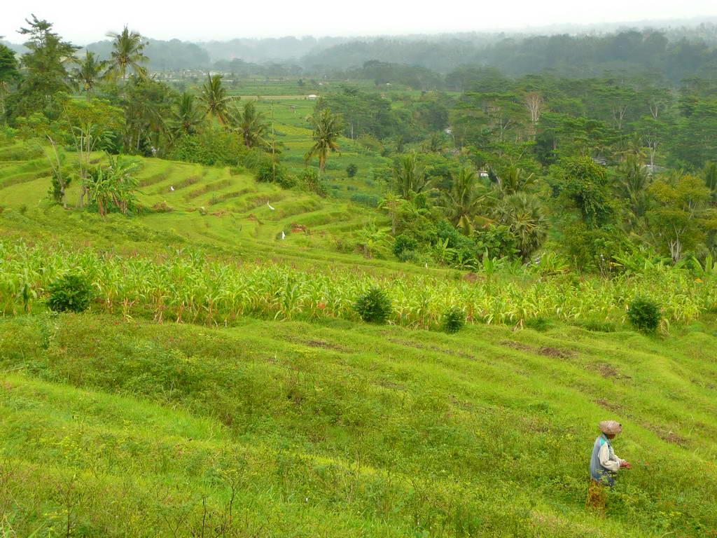 2009-Indonezija_24