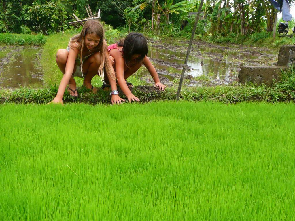 2009-Indonezija_25