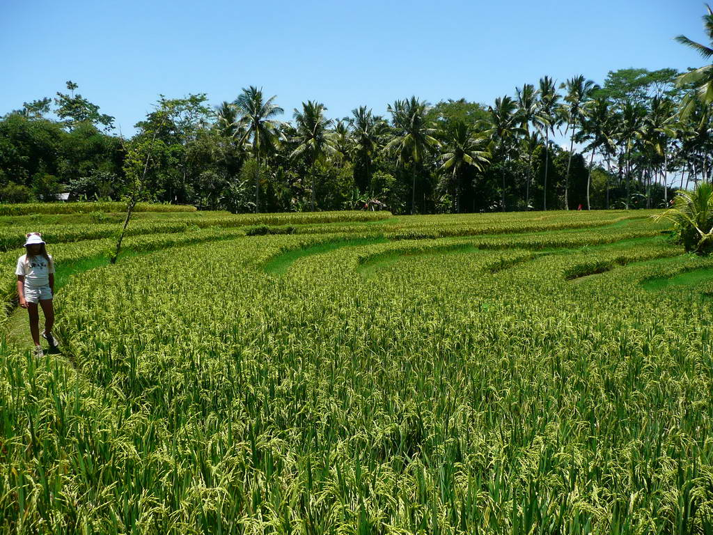 2009-Indonezija_53