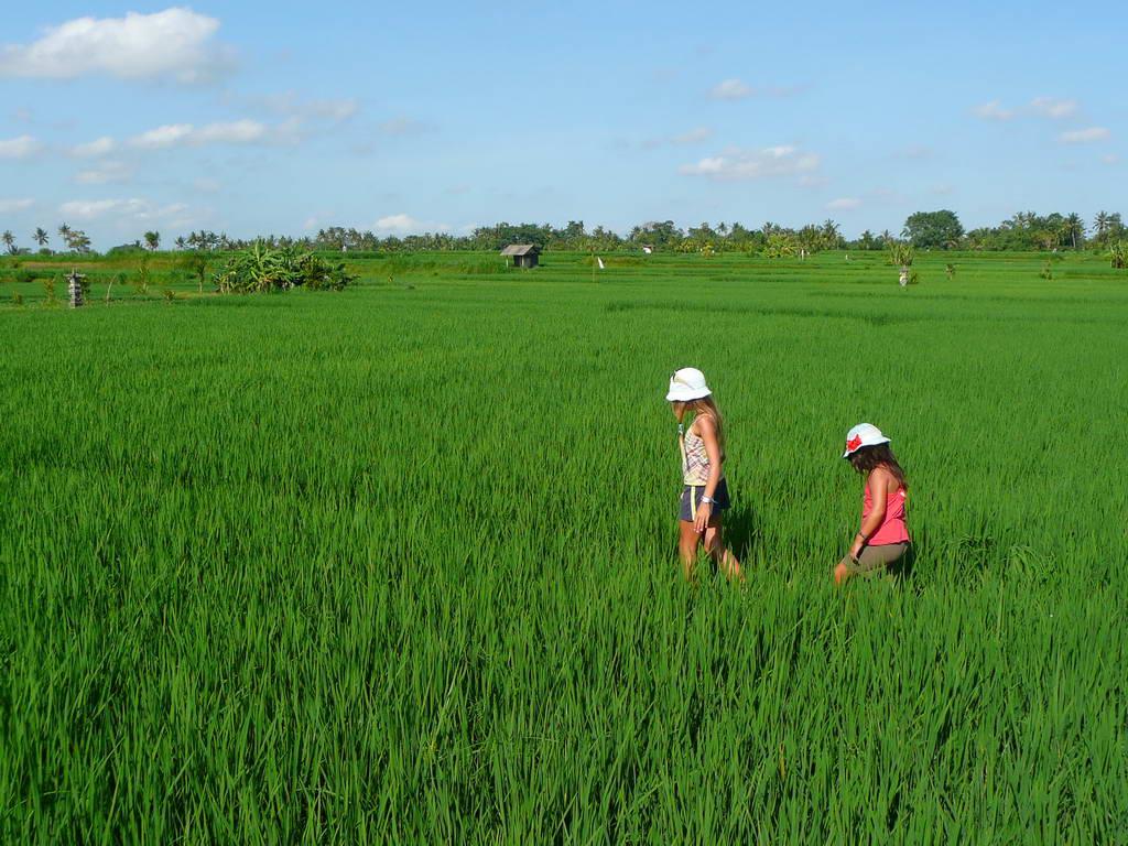 2009-Indonezija_54