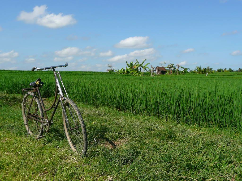 2009-Indonezija_55