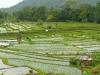 2009-Indonezija_22