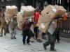 2009-Nepal_21