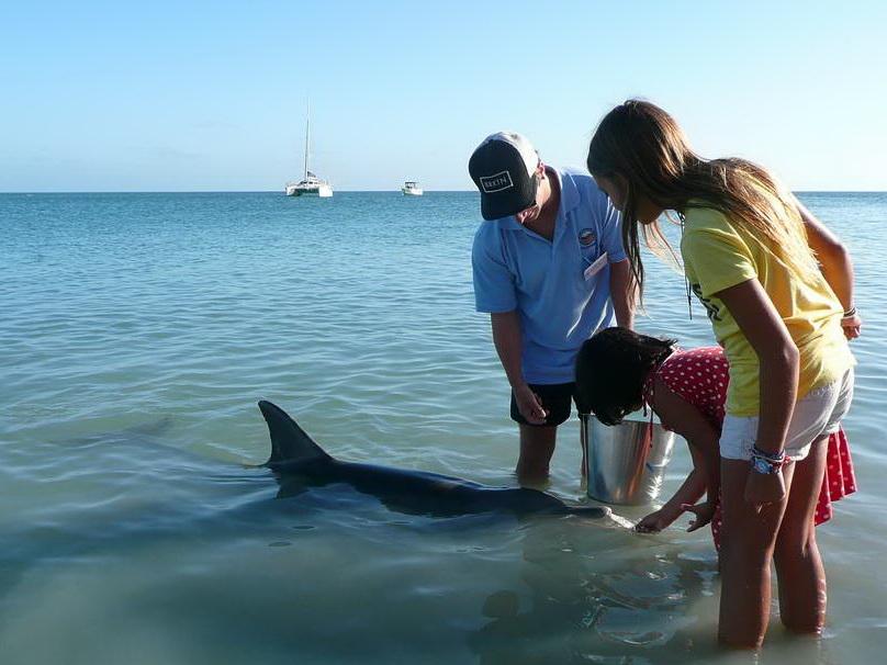 2010-Avstralija_043