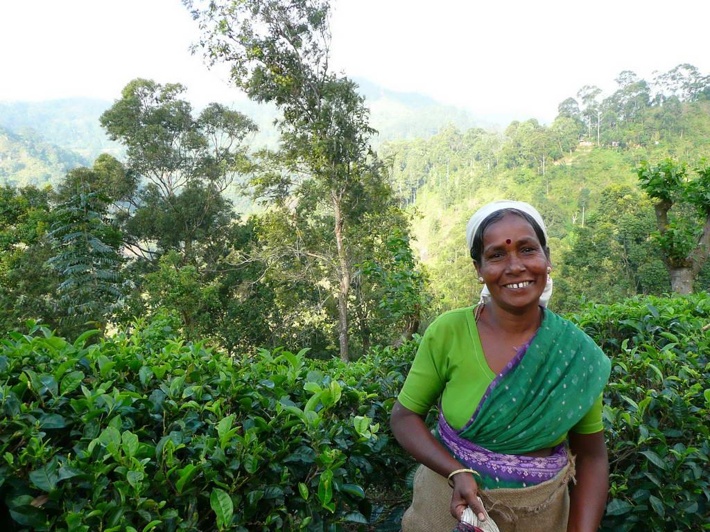 2010-Srilanka_011