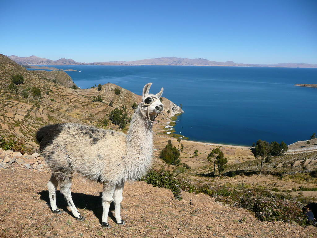 2010-bolivija_14