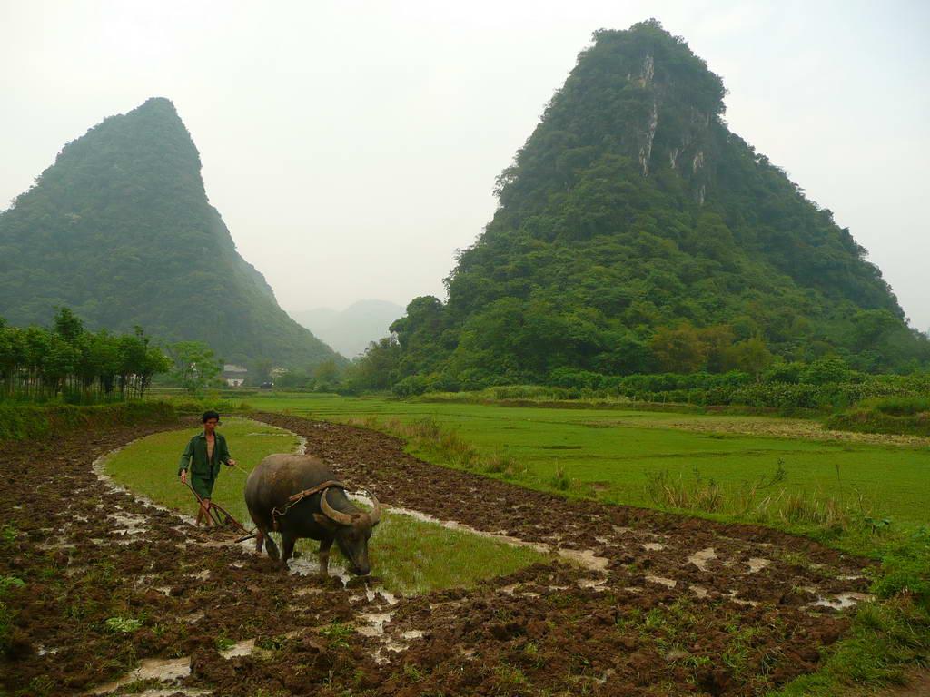 2010-Kitajska_30