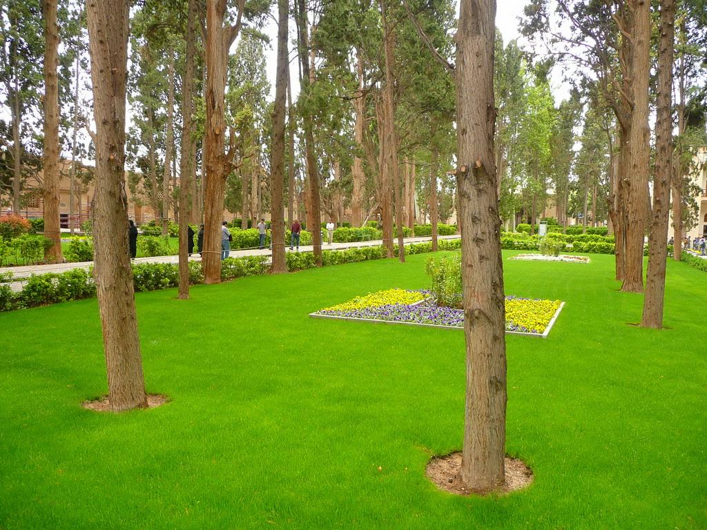 2011-iran_21