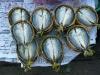 laos-2012_11