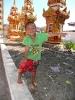 laos-2012_22