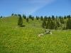 Zaslužen oddih po vzponu na Veliko planino