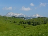 Velika planina, v ozadju Kamniško Savinjske Alpe